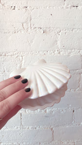 Iridescent Shell Mail Holder