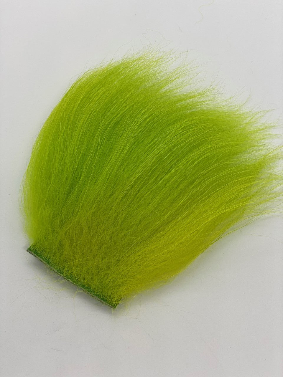 Temple Dog  Fluo Green