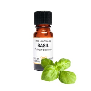 Basil Pure Essential Oil 10ml by Amphora Aromatics
