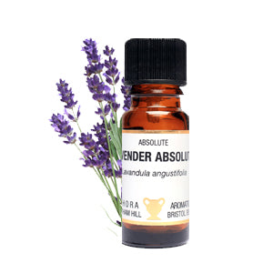 Lavender Absolute 10ml by Amphora Aromatics