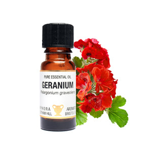 Geranium Pure Essential Oil 10ml by Amphora Aromatics