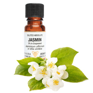 Jasmin Diluted Absolute Pure Essential Oil 10ml by Amphora Aromatics