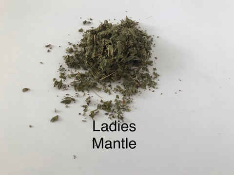 Lady's Mantle dried Herb Tea (Alchemilla vulgaris syn) 25g