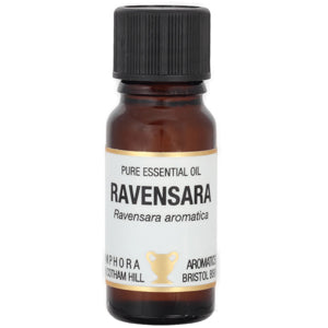 Ravensara Essential Oil 10ml 'The Oil That Heals' (Ravensara aromatica)