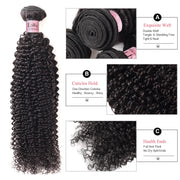 Lolly 100% Virgin Malaysian Kinky Curly Human Hair Extensions 2 Bundles With Lace Closure 9A : LOLLYHAIR