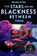 The Stars And the Blackness Between Them (Hardcover)