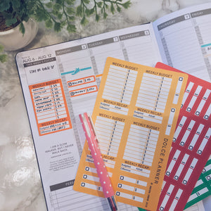 Weekly Budget Tracking Stickers Passion Planner PRO  - Weekly Budget Side Bar, Weekly Bill/Pay Day Reminder