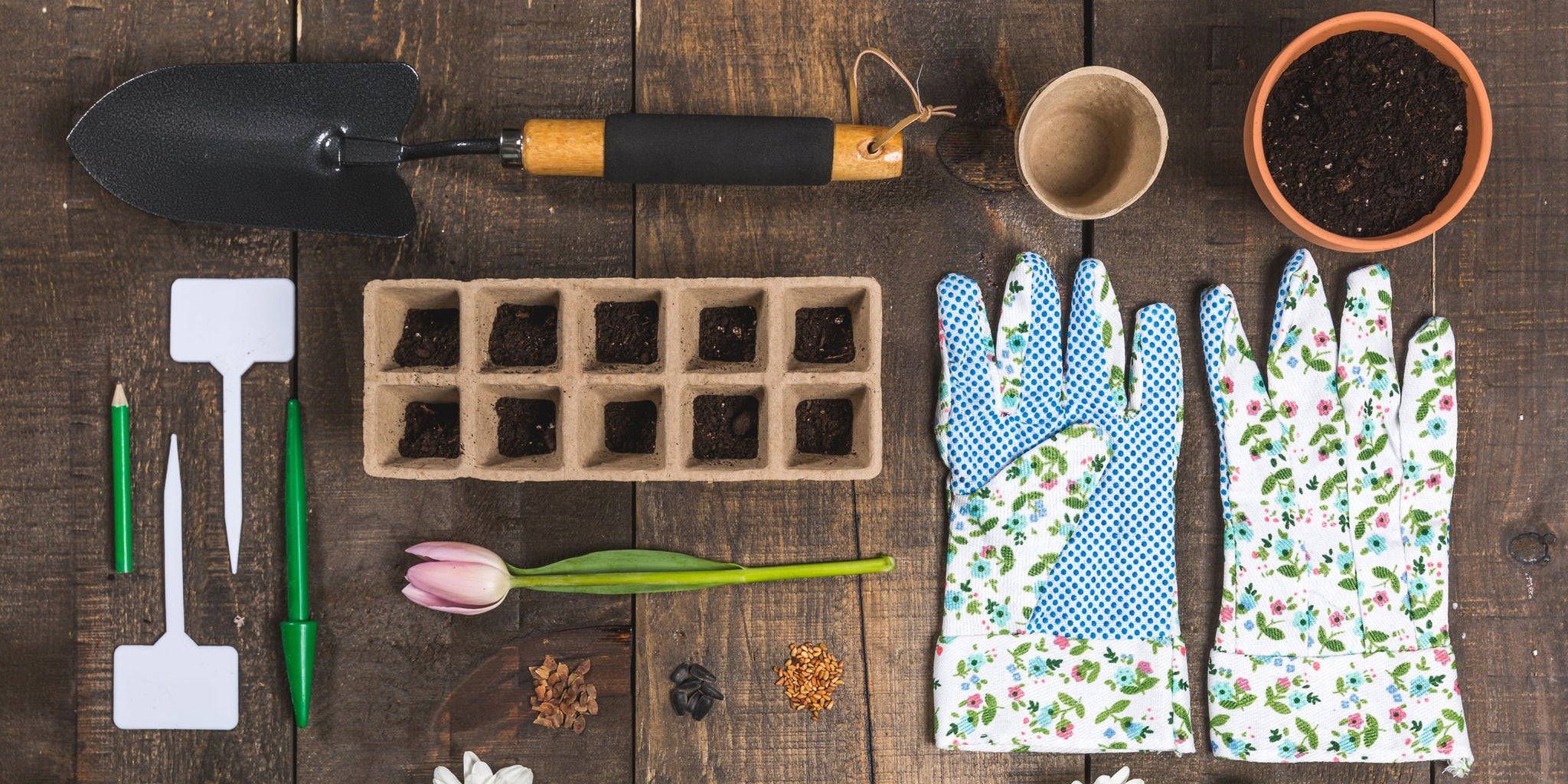Starting Your Garden from Seeds Indoors | Patio Essentials