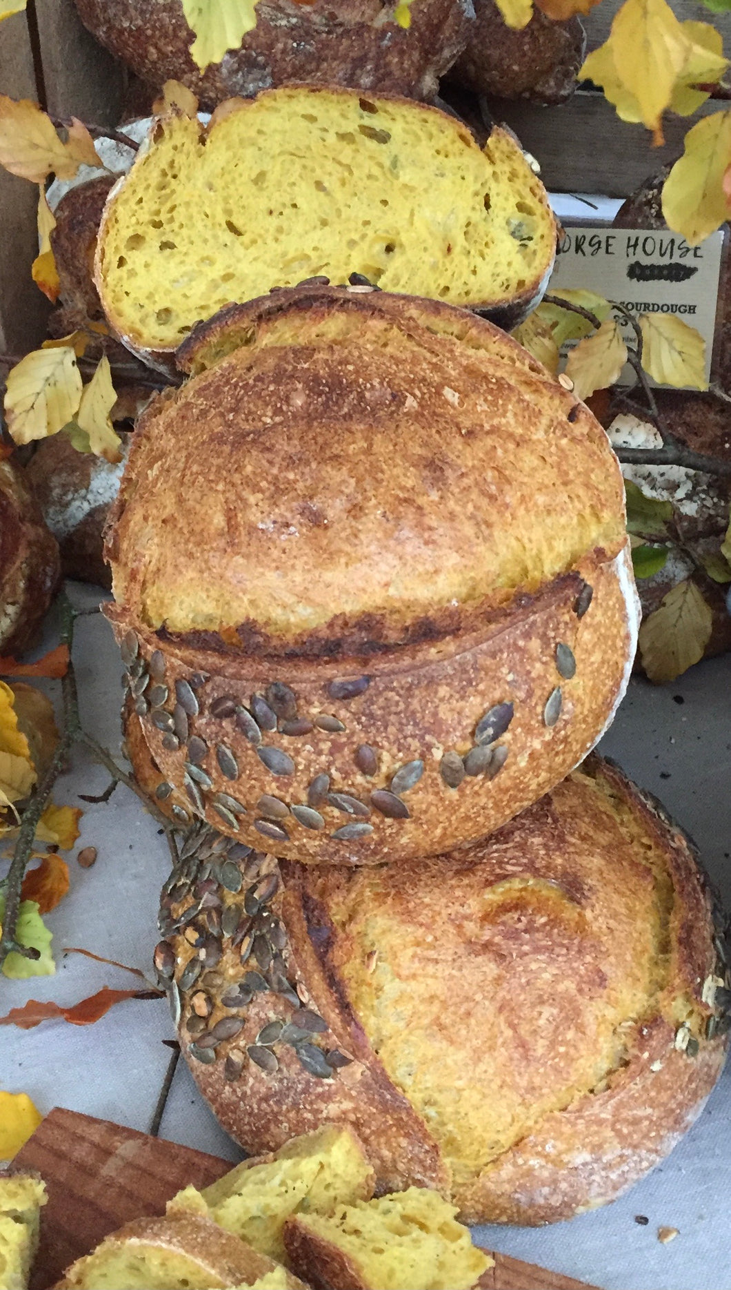 Loaf of the month: Pumpkin sourdough