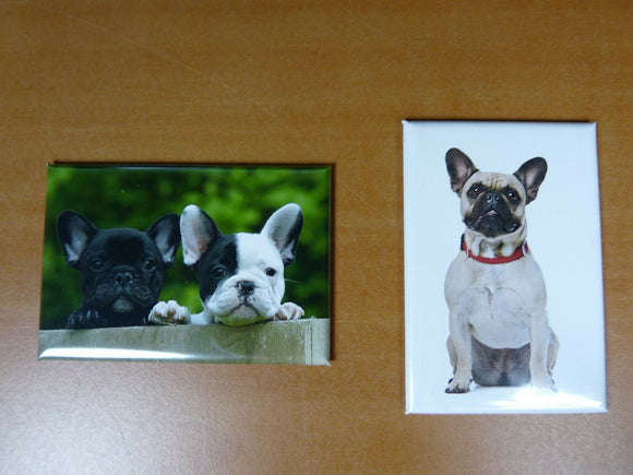 lot 2 Magnets  aimant 7,8 cm X 5,3 cm CHIENS CHIOTS : BOULEDOGUE FRANCAIS 1/2