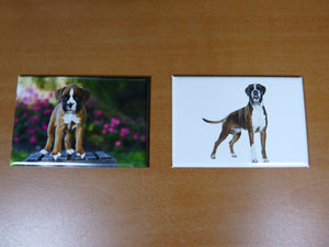 lot 2 Magnets / aimants 7,8 cm X 5,3 cm CHIENS CHIOTS : BOXER 5/6