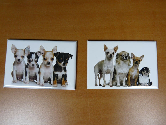 lot 2 Magnets / aimants 7,8 cm X 5,3 cm CHIENS CHIOTS : CHIHUAHUA 6/7