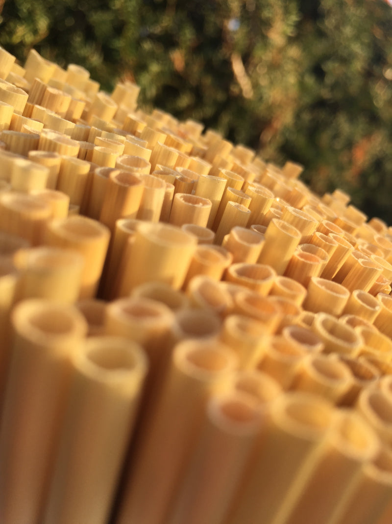 Biodegradable Wheat Straws - Small (15cm)