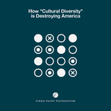 "How ""Cultural Diversity"" is Destroying America (Audio)"
