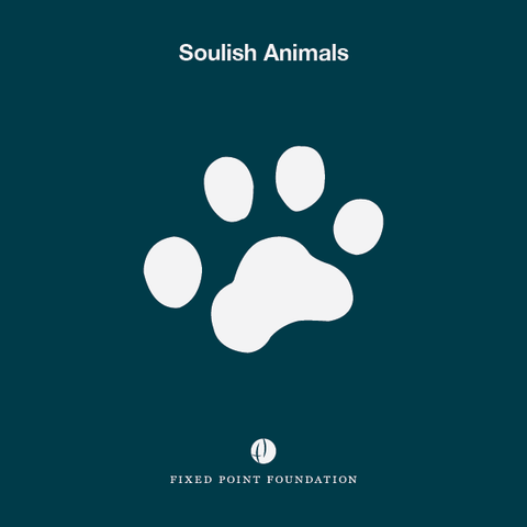 Soulish Animals (Audio)
