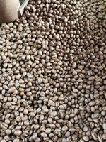 Java Estate Pancoer Peaberry