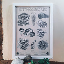 "Load image into Gallery viewer, ""Health-Boosting Fungi"" Medicinal Mushrooms Pen and Ink Recycled Print - Gnostic Forest Art"