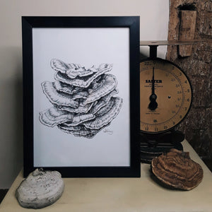 """Chicken of the Woods"" Pen and Ink Mushroom Recycled Print - Gnostic Forest Art"