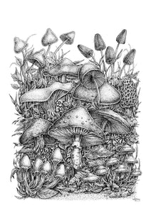 "Pen and Ink ""Spirit of the Mushroom"" Reproduction/Giclée Fine Art Print - Gnostic Forest Art"