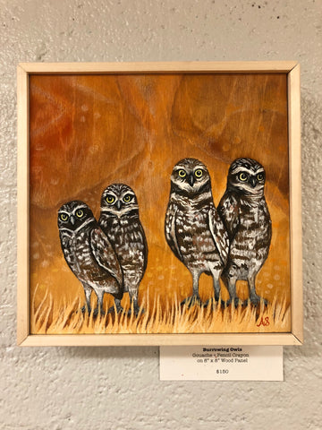 Burrowing Owls by Ainsley Sturko