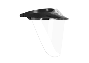 iVisor™ Visor and Shield Kit