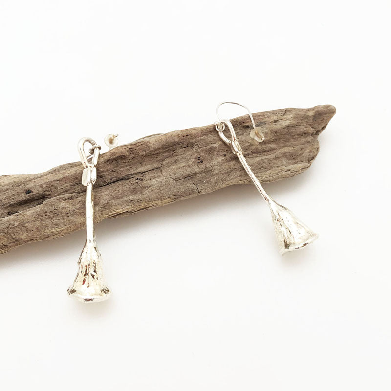 Eucalyptus seed silver earrings