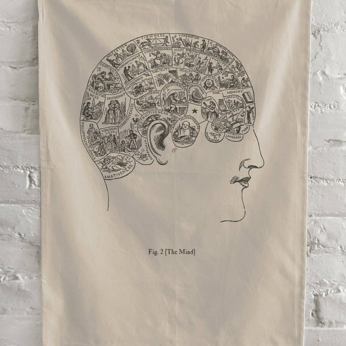 Phrenology Kitchen Towel - Natural