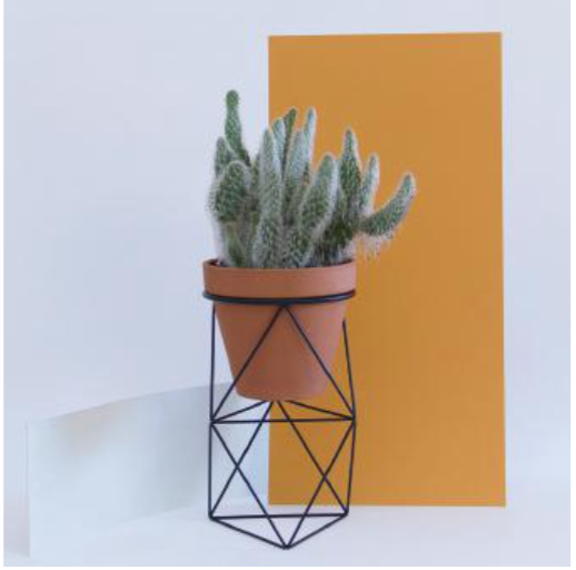 Octahedron Ring Planter - Tall
