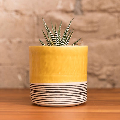 Round Pinched Planter with Stripes