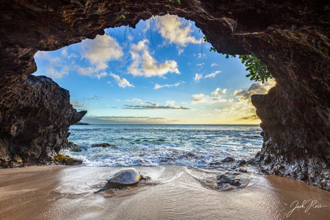 Cave Honu Watching the Sunset
