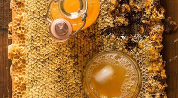 How to make Jun (Honey Kombucha)