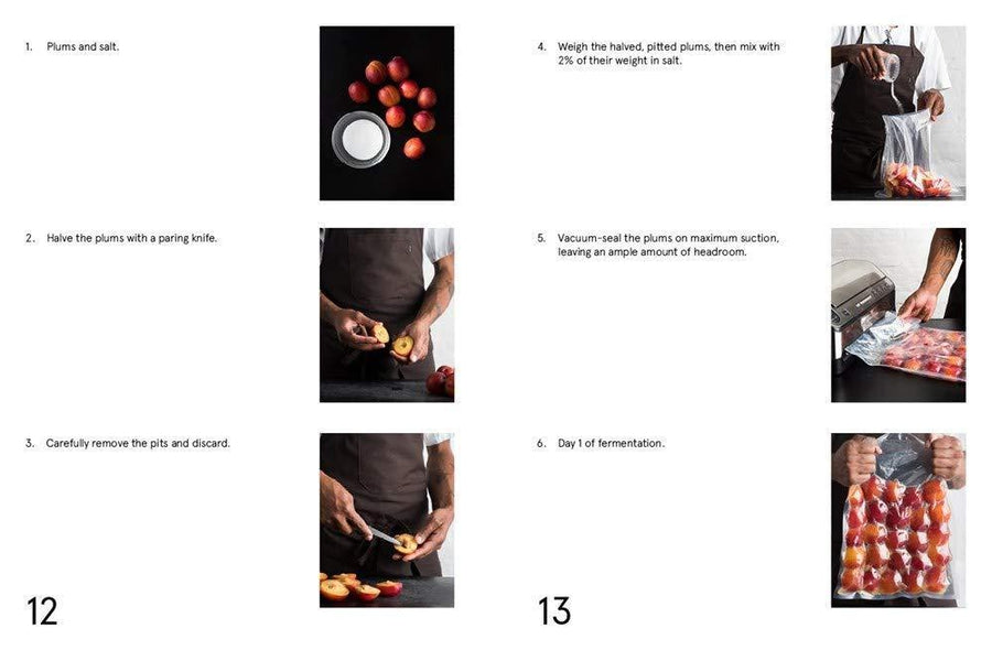 Fermented Plums pages inside the Noma Guide to Fermentation