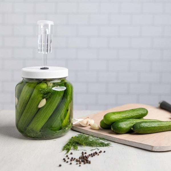 Fermentation Of Pickles With Fermented Pickle Kit