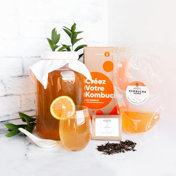 Complete Kombucha Brewing Kit With Scoby