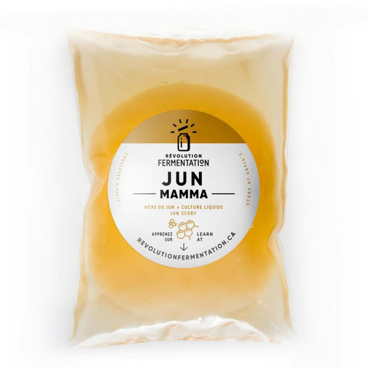 Jun Scoby - Kombucha with honey