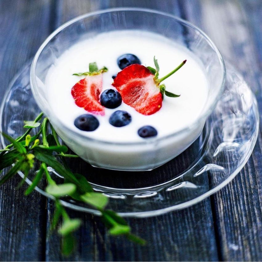 Viili scandinavian yogurt starter culture
