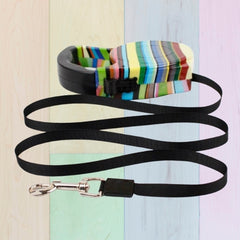 Colourful Retractable Lead - 5M