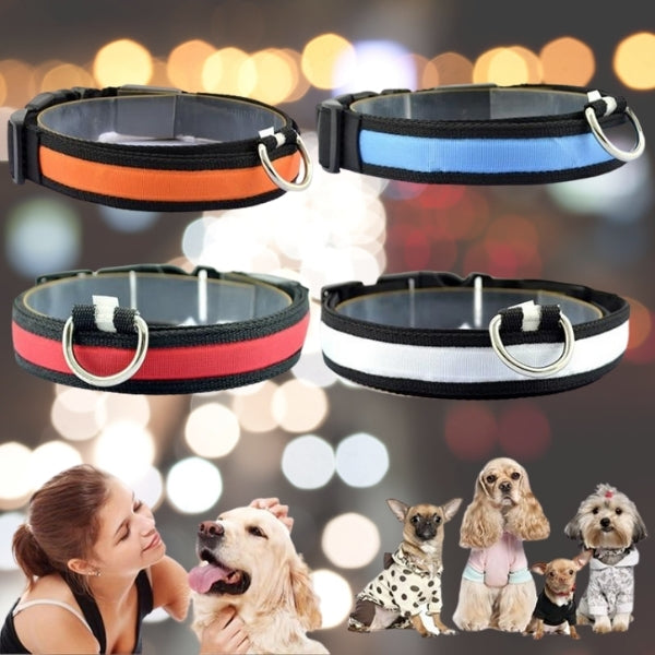 LED Pet Safety Collar - Chargeable! - Farm City Pets