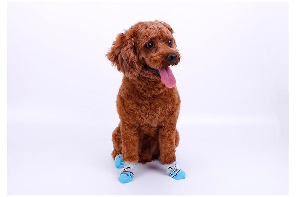 Anti-Slip Knit Socks Range - FarmCityPets