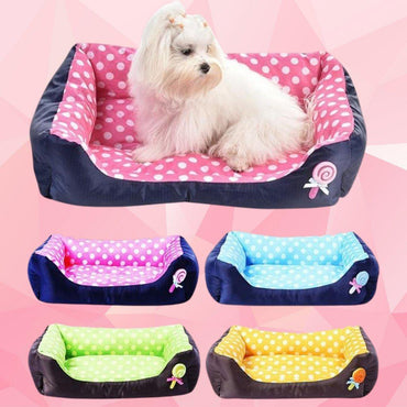 Bright Life Dog Bed