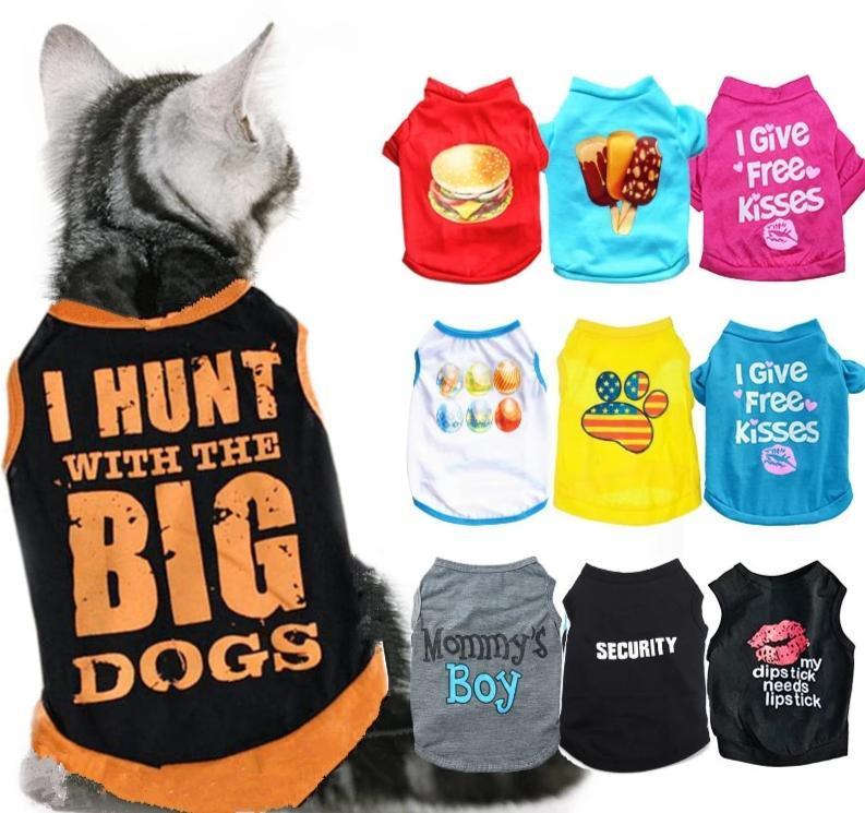 Cool Cat Funky Designs T Range - FarmCityPets