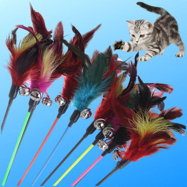 Fun Fancy Feather Toy