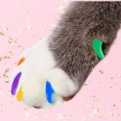 Multi-Color Cat Nail Caps (20PCS) - Farm City Pets