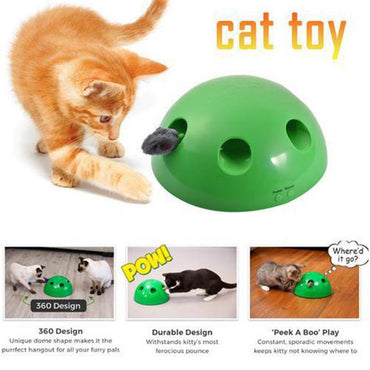 Pop N' Play Automatic Cat Toy