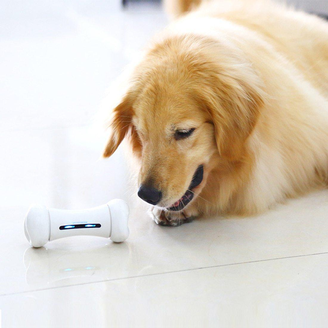 Smart Automatic Bone Toy - Exclusive US offer! - Farm City Pets