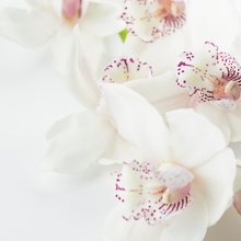 Load image into Gallery viewer, Sea Salt & Orchid