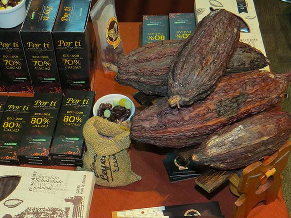 Dried Cacao Pod - Boat