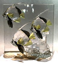 "Angel Fish ""Wonders of the Sea"" Series by Swarovski"