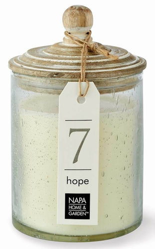 HOPE Gray Oak Soy Wax Scented Jar Candle by Napa Home & Garden