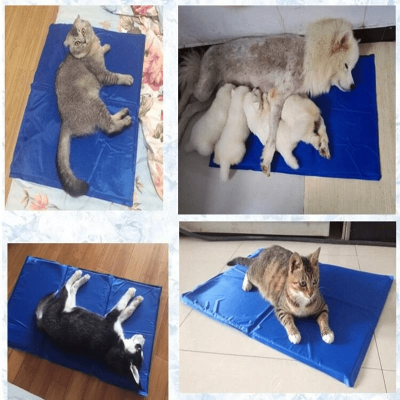 IB Pet Cooling Mat (Summer 2020)